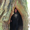 Jeff hiding out in the tree